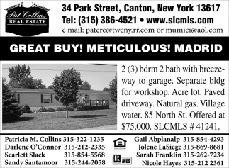 Great Buy Meticulous Madrid Pat Collins Real Estate Canton Ny